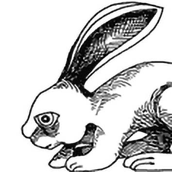 Picture of the Yoruba Trickster God Hare from our Yoruba mythology image library. Illustration by Chas Saunders.